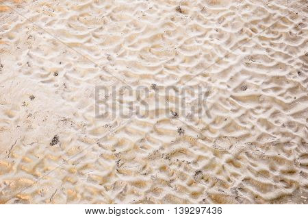 the footprints on the yellow sand beach