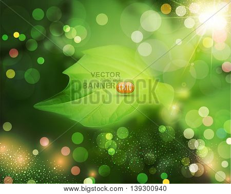 vector summer background with green, blur and leaf