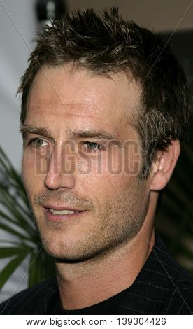 Michael Vartan at the Hollywood's Helping Hands art auction held at the Avalon Theater in Hollywood, USA on June 2, 2005.
