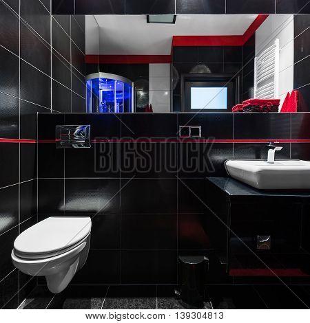 Elegant Black Tiles In Bathroom