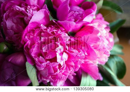 Pink And Beautiful Peonies On Wooden Background