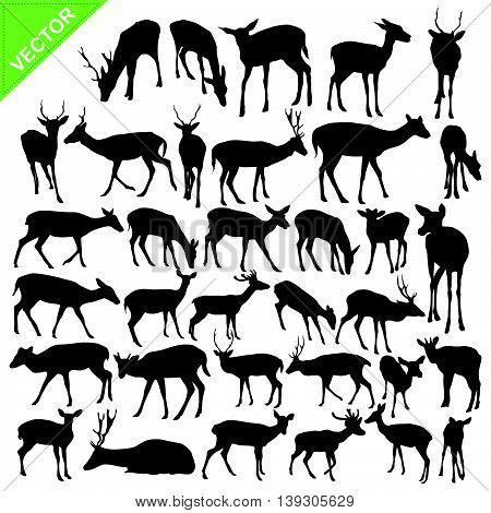 Deer silhouettes vector collections on white color background
