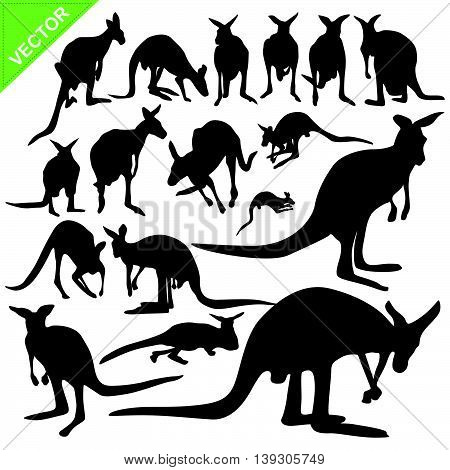 Kangaroo silhouettes vector collections on white color background