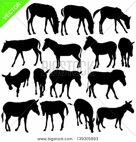 Horse and Zebra silhouettes vector collections on white color background