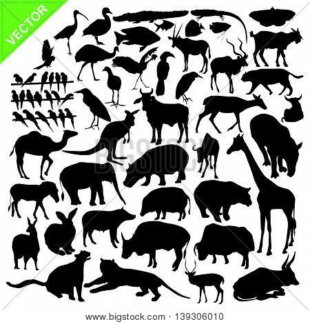 Animals silhouettes vector collections on white color background