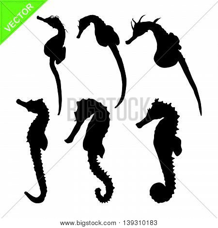 Seahorse silhouette vector on white color background