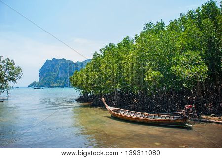 The Roots Of The Trees And The Boat.. Peninsula Of Railay. Krabi, Thailand.