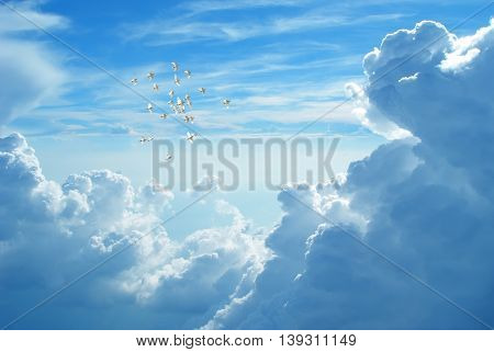 Flock of doves in flight against blue cloudy sky representing angels carrying the soul to Heaven