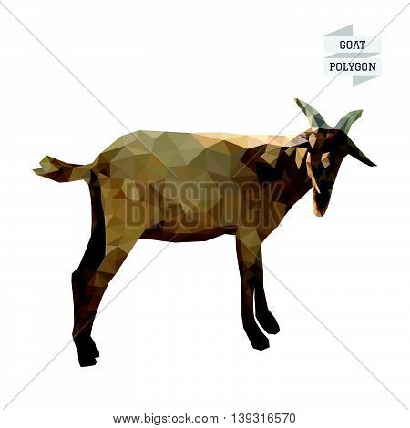 Goat polygon vector on white color background