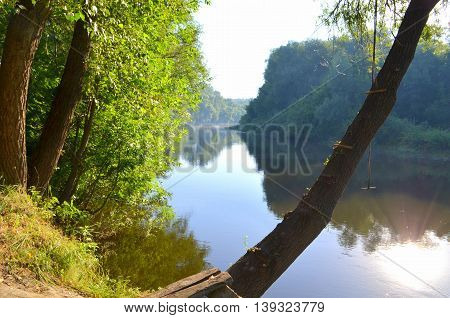 The landscape - the river and the forest