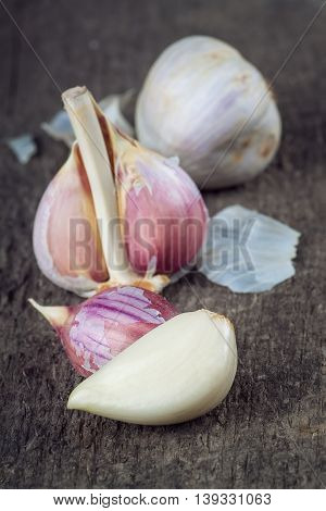 garlic bulb on rustic wooden background. Garlic clove garlic bulb on vintage wooden background. Seasoning spice garlic