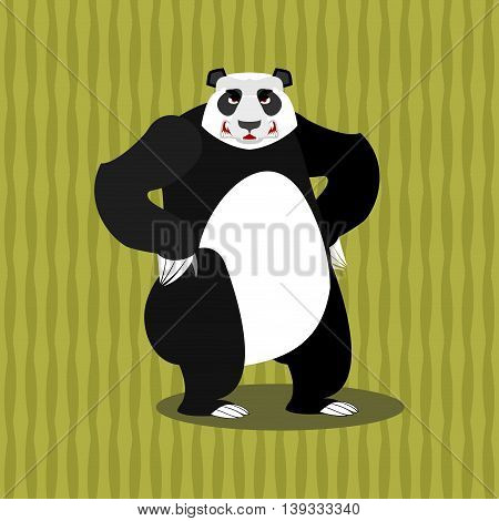Panda Angry. Furious Chinese Bear. Animal Furious. Aggressive Wild Beast