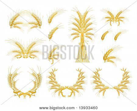 Set of Design Elements with Wheat