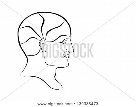 Vector Phrenology Head Blank Outline Landscape Format