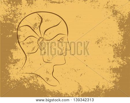 Vector Phrenology Head Sepia Outline Landscape Format