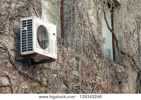 Old air condition unit on the wall with Dried ivy plant