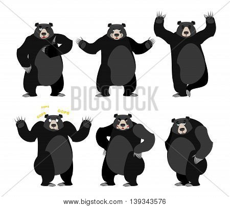 Baribal American Black Bear Set. Grizzly Various Poses. Expression Of Emotions. Wild Animal Yoga. Ev