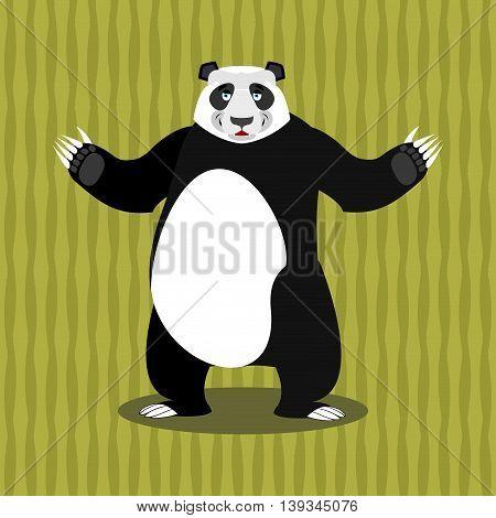 Panda Chinese Bear. Good Animal. Jolly Animal And Bamboo
