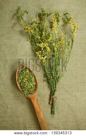 Melilot sweet clover. Dried herbs for use in alternative medicine. Herbal medicine phytotherapy medicinal herbs. For the preparation of infusions decoctions tinctures powders ointments tea. Background green cloth