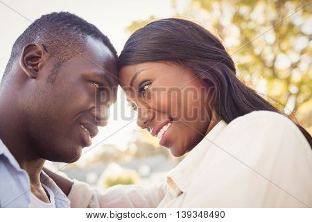 Happy couple posing together at park