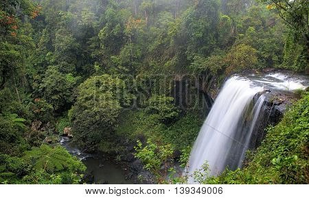 Waterfall in the forest. Side view. Dense forest.