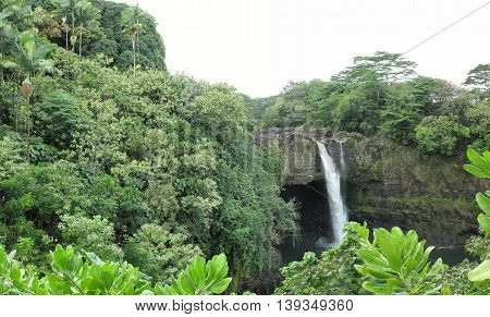Waterfall in the forest. Side view. Dense forest