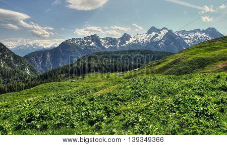 Green valley in the mountains. Mountain landscape.
