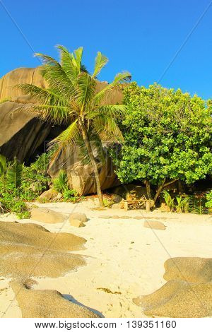 Under the Sun Magnificent Seychelles