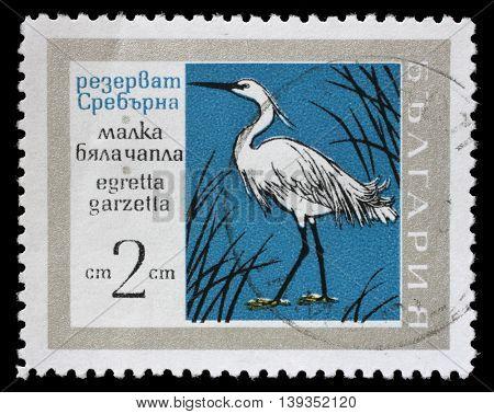ZAGREB, CROATIA - JULY 03: A stamp printed in Bulgaria showing Little Egret bird, circa 1960, on July 03, 2014, Zagreb, Croatia