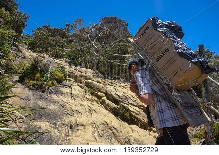 Ranau,Sabah-March 12,2016:Mountain KInabalu porter transporting heavy luggage through Timpohon trail to Laban Rata at 3,273 meter for supplying food and drink.