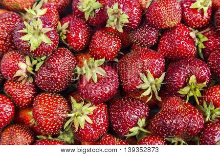 Background from freshly red harvested strawberries nature