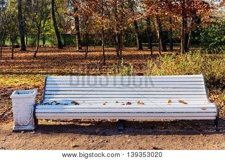 empty white bench in the autumn park