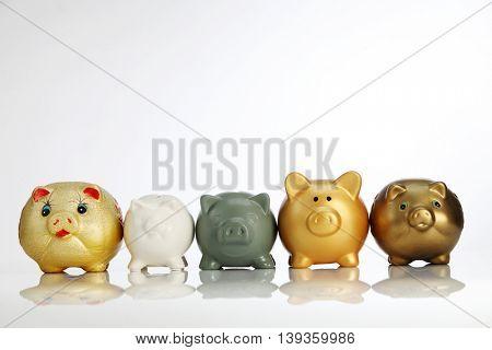 Five little piggy in a row