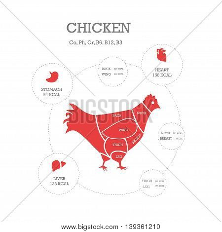Butcher shop concept vector illustration. Chicken cuts. Animal parts diagram.