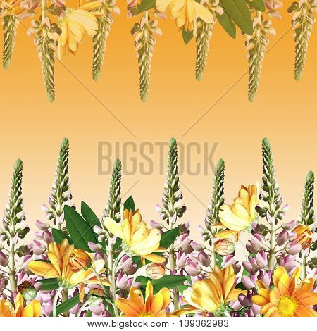 Beautiful floral background with pink lupine and yellow chrysanthemums