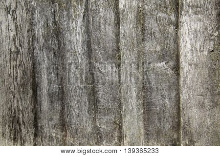 Macro Shot Of Wooden Planks Usable As Texture