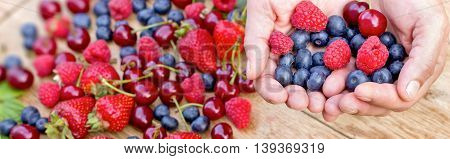 Hands full of healthy organic fruits - wild berries close up