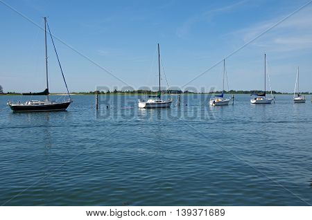 Sailboats docked in still summer waters of new England