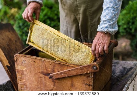 Beekeeper Working On Bee Hive
