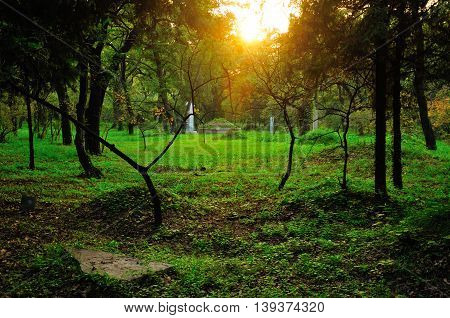 Burial mounds in the wooded Confucius Family Cemetery in the city of Qufu located in Shandong province China as the sun sets.