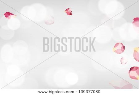 Random beautiful geometric style rose petals flying on white background. Great for art presentations forms and ad print.