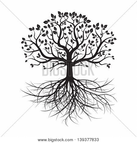 Vector Illustration. Black Tree and Roots. Nature.
