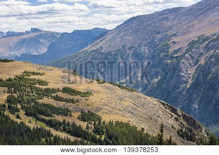 Aerial view of plains in the Rocky Mountains with scattered pine forests in Colorado