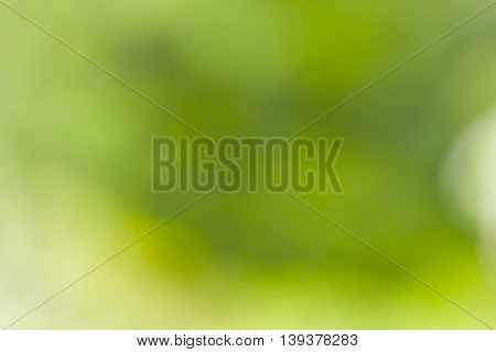 Abstract background of unequal green tonage or shades