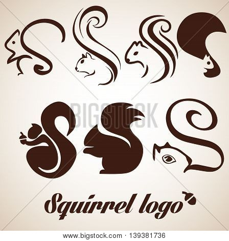 squirrel logo concept designed in a simple way so it can be use for multiple proposes like logo ,marks ,symbols or icons.