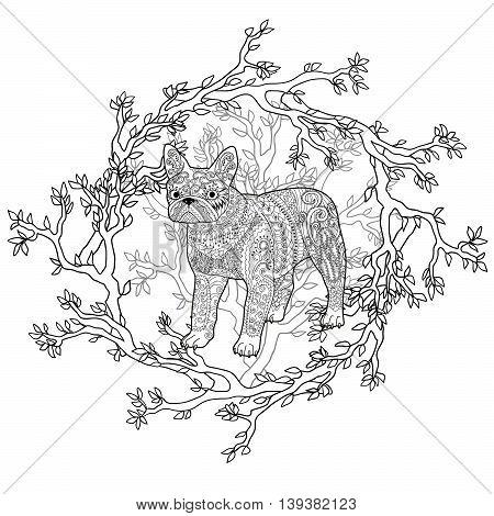 High detail patterned french bulldog in zentangle style. Adult coloring page with a dog for antistress art therapy. Zendoodle template for t-shirt, tattoo, poster or logo. Vector illustration.