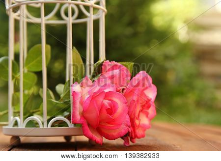 decorative cage with flowers for wedding ceremony
