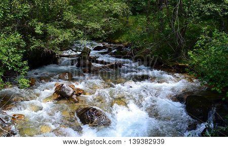 Mountain river, reserve Teberda, Karachay-Cherkessia Republic, Russia. Photo taken on: July 27 Saturday, 2013