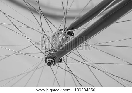 Bicycle Spoke Detail Closeup. Black And White Detail View With Hub And Spokes Of One Bicycle Wheel..