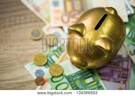 Gold Piggy Bank With Euros